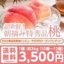 【送料無料】特秀品桃3kg!山形県産 桃/新鮮な桃を朝摘みで産地直送します♪/あかつき/川中島/伊達の桃(約3kg 約8個〜10個)