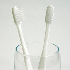 業務用使い捨て歯ブラシ(ハミガキ粉無し) 500本入り│口腔衛生用 清掃用 掃除用 工業用 ハブラシ はぶらし 5000円以上送料無料