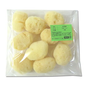【業務用】グリーンラベル 天然海綿シルク サイズ7(約6〜7cm)1袋10個入り│海綿スポンジ 5000円以上送料無料