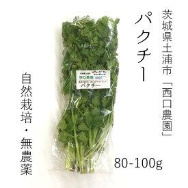 生パクチー 80-100g コリアンダー 国産 豊洲直送【パクチー80−100g】 冷蔵 食用ハーブ