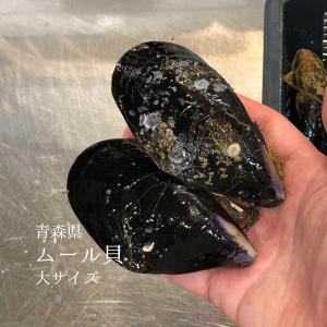 ムール貝 大サイズ(1個約70-100g)青森県産 他 1キロ【ムール1K】冷蔵