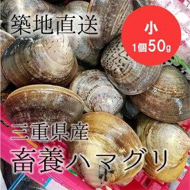 畜養ハマグリ 蛤 三重産 小サイズ 2キロ計40個前後(1個50g) 豊洲直送 BBQ バーベキュー 海鮮【養ハマ2K(40)】 冷蔵
