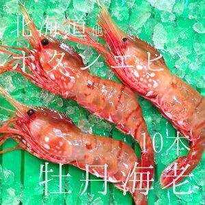 生 最高級ボタンエビ 海老 北海道産 約60g 大サイズ 約10本 刺身OK 豊洲直送【生ボタンエビx10本】 冷蔵