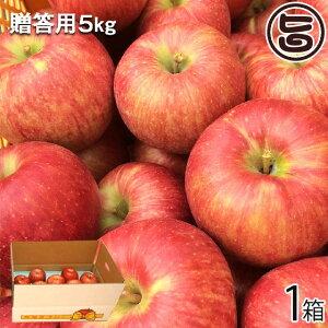 ギフト 丘の上ファーム原農園 サンつがる 贈答用 5kg(12-18玉) 長野県 信州 人気 土産 りんご 果物 美味しさを重視した 無袋栽培 贈答用 条件付き送料無料