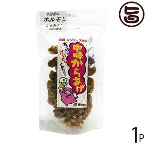 羽秀食品 中身からあげ 80g×1袋 沖縄 人気 定番 土産 珍味 つまみ おつまみ 沖縄シママース使用 送料無料