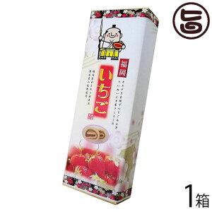 イソップ製菓 福岡あまおう苺あん巻 細箱×1箱 熊本 土産 熊本土産 条件付き送料無料