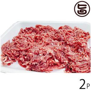 泰阜村ジビエ加工組合 鹿肉 ミンチ 500g×2P 長野県 土産 南信州産 シカ肉 天然国産鹿肉 条件付き送料無料