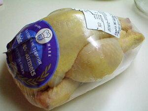 フランス産 雛鳥 コクレジョーヌ l 鶏肉 雛鳥 コクレ お取り寄せ 輸入食材 輸入食品 お取り寄せグルメ レストランの味 冷凍 お肉 肉 丸ごと一匹 高級 パーティー 父の日 母の日 記念日 おうち