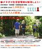 LAD WEATHER 3D计步器 男士手表 跑步 消耗热量 行走距离 步数 测量