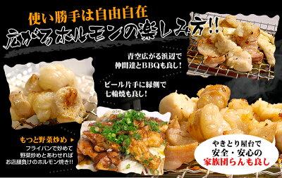 ホルモン焼増量セット(タレ2本付き)【お歳暮2016】
