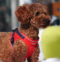 【在庫限り】【セール品につき返品・交換不可】 Topcanis×Ratia ドッグプレミアムメッシュベスト型ソフトハーネス 犬…
