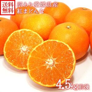 愛媛県産 みかん 送料無料 訳あり 紅まどんな 計5kg前後 高級 柑橘 オレンジ 紅マドンナ ◆出荷予定:12月中旬
