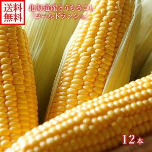 とうもろこし ゴールドラッシュ 12本 2Lサイズ 北海道産 トウモロコシ 甘い とうもろこし 北海道 BBQ バーベキュー 送料無料 とうきび トウモロコシ 甘い トウキビ 生で 食べられる とうもろこ
