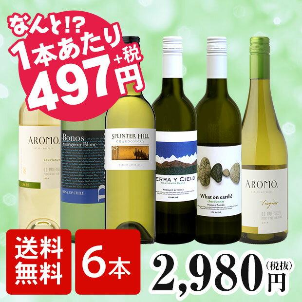 【送料無料】世界の白ワインを飲み比べよう!厳選高コスパ白ワイン6本セット ワインセット