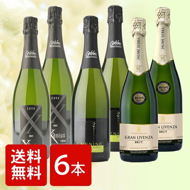 [ワイン6本セット][送料無料]ソムリエが選ぶ お薦め スパークリングワイン 3種6本セット スパークリングワイン セット 6本 スプマンテ CAVA カヴァ シャンパン [RCP