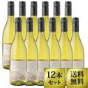 [ワイン12本セット][送料無料]白ワイン シャルドネ チリワイン 白 サンタ エルミーニャ シャルドネ チリ マウレ ヴァレー 白辛口 ワインセット [W4] [WS] [W]白 ワイン WINE 葡萄酒 [送料込み 送料込] [RCP]