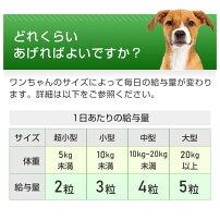 【メール便・送料無料】【半額クーポンキャンペーン】犬用グルコサミンコンドロイチンペットサプリ犬用関節サプリ(毎日散歩)<1袋60粒入り>