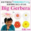 期間限定ポイント10倍 特大サイズ ビックガーベラ 大きい 造花 ガーベラ 選べるカラー 白 黄色 ピンク オレンジ 紫 造…
