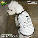 【数量限定・特価】【メール便可】 犬 キャミソール 服 犬の服 ドッグウェア タンクトップ かわいい 人気 新作 小型犬…