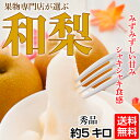 【梨】【秀品】今が旬!大玉で大満足「和梨」!約5キロで8〜14玉《送料無料》【豊水、秋月、新高、南水】[ギフト、贈…