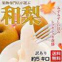 【梨】【訳あり】今が旬!大玉で大満足「和梨」!約5キロで6〜14玉《送料無料》【豊水、秋月、新高、南水など】現在は…