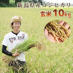 【頑張って送料無料!】新潟県産内山農園のコシヒカリ!こしひかり 玄米10kg非コシヒカリBLで昔からあるコシヒカリ本来の旨味!オーガニック マクロビオティック乳酸菌・酵母菌肥料でツ