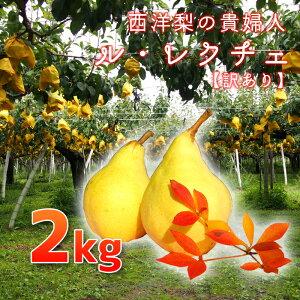 【12月2日〜18日に発送予定】【訳あり特価品!】金子さん夫妻が作る果物の中の貴婦人!訳あり ル・レクチェ 2kg(5〜7玉)キズ、くぼみがあるためご家庭用に!※生鮮果実のため商品代引