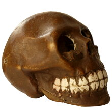 リアルな造形のスカルアッシュトレイ灰皿(M)[ドクロ][髑髏][ガイコツ][骸骨][ゴーストライダー]