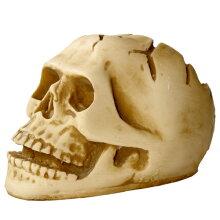 リアルな造形のスカルアッシュトレイ灰皿(S)[ドクロ][髑髏][ガイコツ][骸骨][ゴーストライダー]