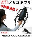 メガゴキブリ フィギュア 巨大ゴキブリフィギュア(全長約65cm)巨大ごきぶり giant cockroach figure