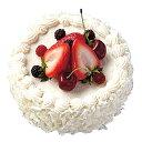ケーキ 装飾 食品サンプル 150mmホワイトチョコフルーツケーキ