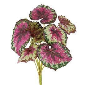 ベゴニアブッシュ 夏の装飾 南国植物ディスプレイ