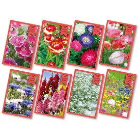 花の種(新デザイン)100個セット販売 景品・粗品・販促品・ノベルティ ※季節・時期により種類は変動いたしますご了承ください