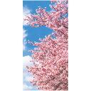 桜 ディスプレイ タペストリー 桜青空(防炎) 上下パイプ・上部ひも付き 180×90cm