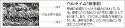 ★キャスコ★高級素材ベルセイム21プラス素材グローブSF717