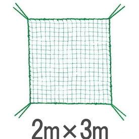 ライト M-126 ゴルフ練習ネット用 取替・補強 規格ネット(2m×3m) 【ゴルフ】