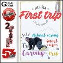 16-17 DVD snow First trip / MELISSA (htbs0245) ガールズライダーのフリーランムービー SNOWBOARD スノーボ...