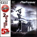16-17 DVD SNOW After Forever (visb00170) Absinthe Films アブシンス フィルムス スノーボード バックカン...
