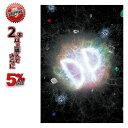 19-20 DVD ダーティーピンプ DIRTY PIMP 「DP」 SNOWBOARD ジブ パーク ストリート スノーボード