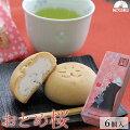 【60代男性】春の手土産は桜のお菓子!お花見に人気の桜スイーツ・春のお菓子は?