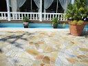 乱形石 お庭のガーデニング DIYもOK アルビノイエロー (RK07)