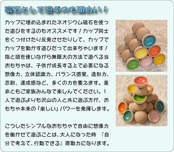 【送料無料】●遊び力を試される不思議な積み木知育玩具ブロック型はめ木のおもちゃパズル男の子女の子赤ちゃんおもちゃ3歳4歳5歳6歳7歳8歳9歳10歳誕生日ギフト誕生祝い出産祝いに♪親子木育日本製