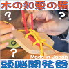 FLASK PUZZLE (BRAIN TRAINING)Wooden Toys (Ginga Kobo Toys) Japan