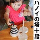 【名入れ可】●数学パズル ハノイの塔10段 ゼブラバージョン 木のおもちゃ 型はめ パズル 日本製 知育玩具 積み木 1歳…