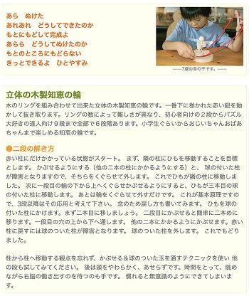 【名入れ可】●立体知恵の輪(2段)日本グッド・トイ受賞おもちゃ日本製木のおもちゃ脳トレ紐通しパズル頭脳活性知育玩具型はめパズル国産4歳5歳6歳7歳8歳幼児子供〜高齢者小学生誕生日ギフト男の子女の子