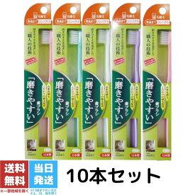 磨きやすい 歯ブラシ ライフレンジ 奥歯まで 先細 10本入り SLT-12 最新モデル
