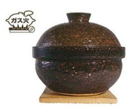 【送料無料】長谷園 いぶしぎん(大)(金網×3・陶敷板・チップ(100g)付)NCT-80【長谷製陶】