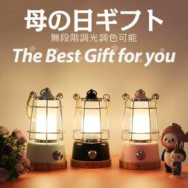 LEDランタン 常夜灯 照明 ライト コードレス USB 充電式 ledライト 乾電池可 卓上ライト デスクランプ 充電式 ベッドサイドライト 電球色 昼白色 無段階調光調色 防災グッズ 災害対策 キャンプ アウトドア 母の日(DS-8E)