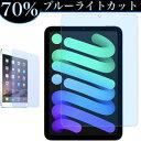 【ブルーライトカット】iPad mini6 8.3インチ 2021 第9世代 第8世代 10.2インチ Air4 10.9インチ Pro11 2020 10.2イン…