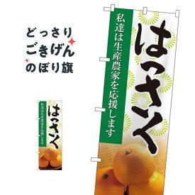 はっさく のぼり旗 21984 八朔 みかん・柑橘類